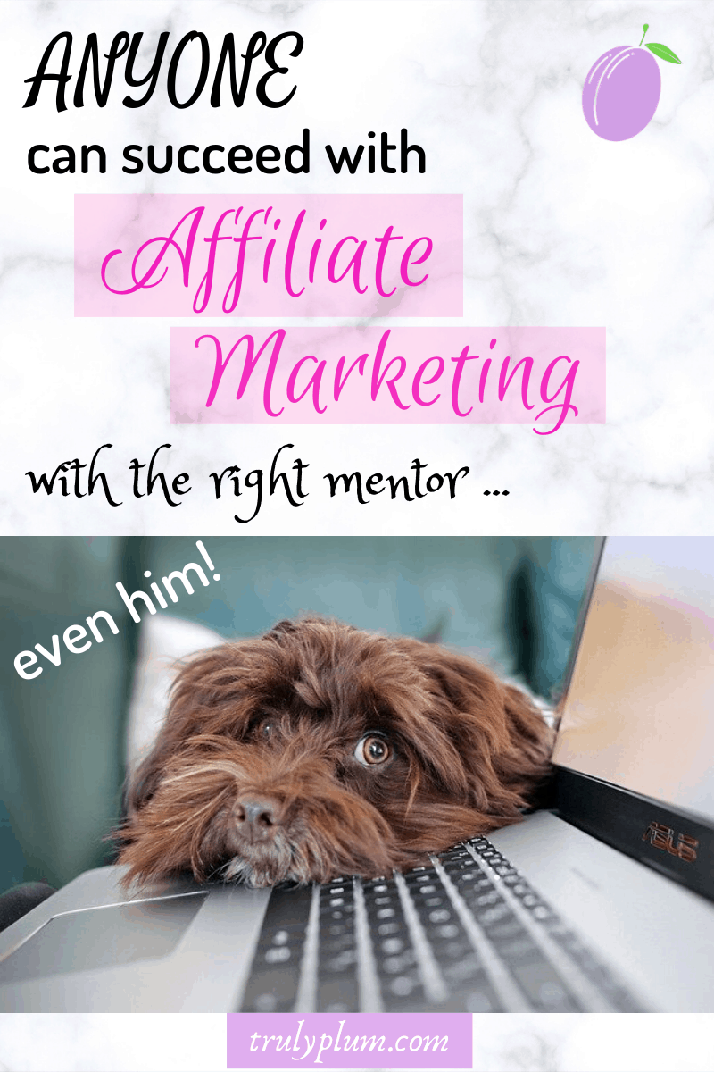 anyone can succeed with affiliate marketing with the right mentor