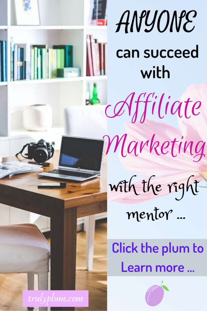 Affiliate marketing - anyone can succeed with the right mentor